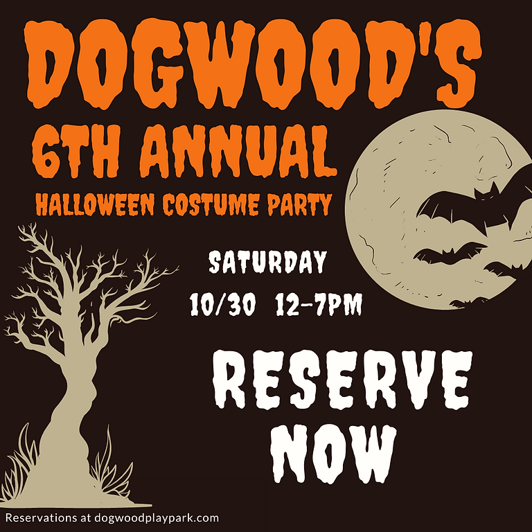 6th Annual Halloween Costume Contest 12-2pm Reservation