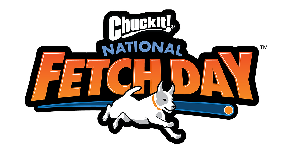 Chuck It - National Fetch Day Party