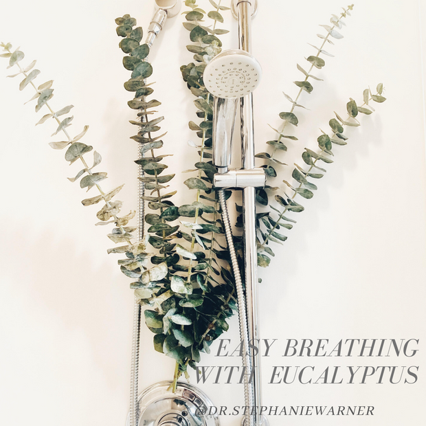 Easy Breathing With Eucalyptus