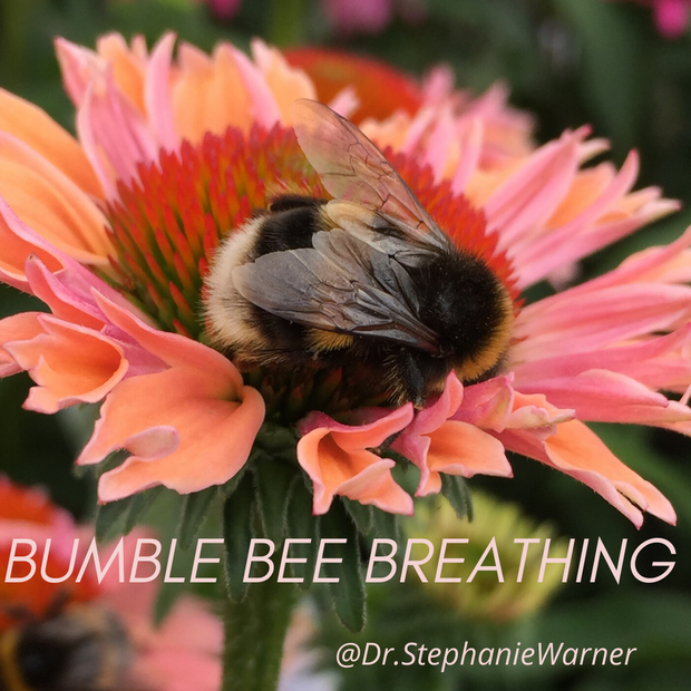 🐝 Have you heard of BumbleBee Breathing? 🐝
