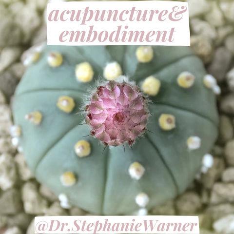 Acupuncture & Embodiment