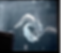 スクリーンショット 2018-11-05 0.00.48.png