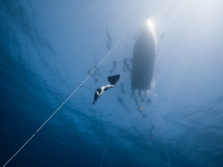 【Training】フリーダイビング トレーニング(海洋)