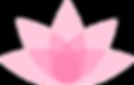 Lotus to seperate testimonials.png