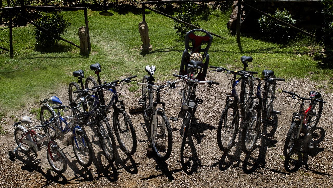 Casa Leana - Bikes