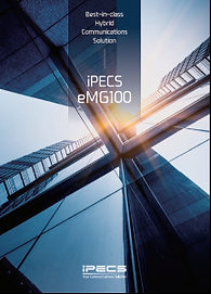 emg 100 manual.png