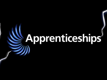 Flexible Apprenticeships in Construction Manual launched today