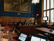 LAAN Meeting in the House of Lords