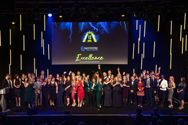 National Apprenticeship Awards 2019 - The Winners