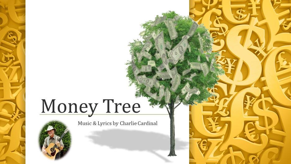 My Money Tree Video