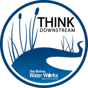 Think Downstream logo