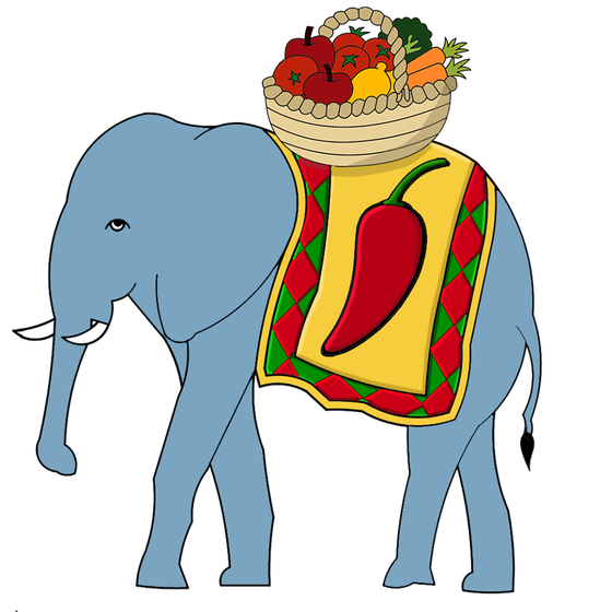 Everest Grocery Store Logo