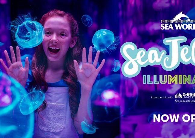 Sea-Jellies-Illuminated-Now-Open-1-1024x