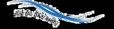 logo de Stroming transparant.png