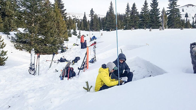 Digging snowpits in an avalanche course.