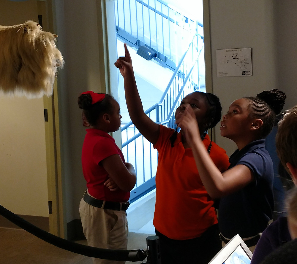 Students visit the museum
