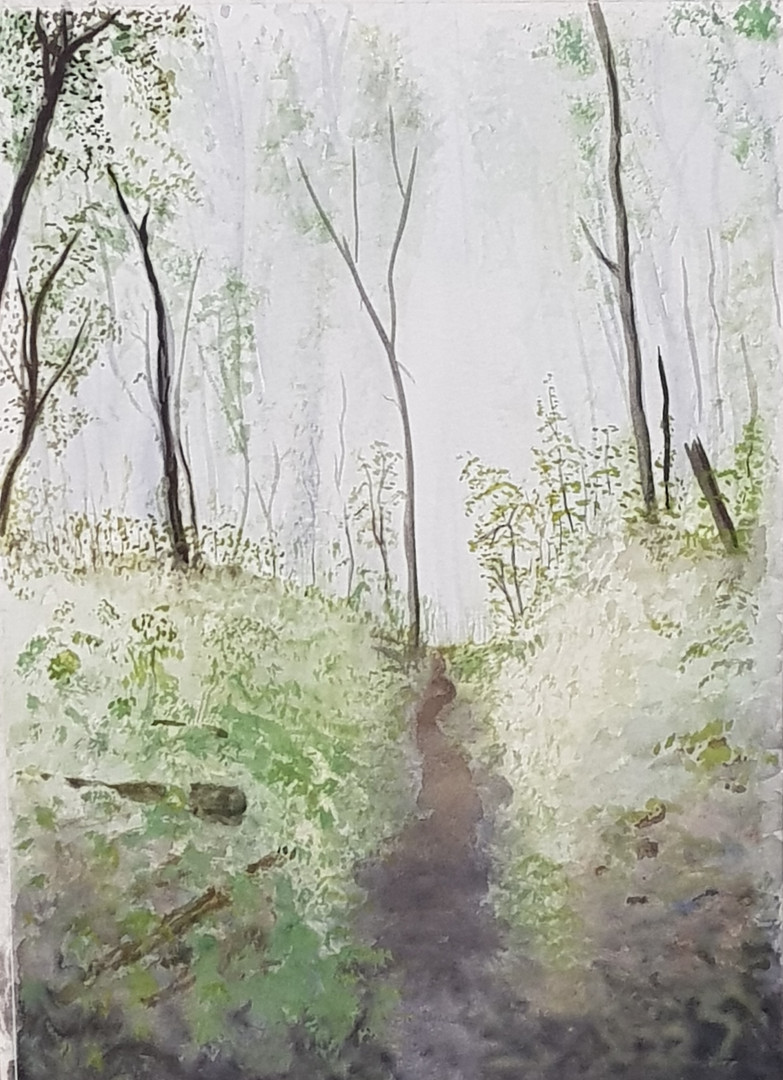 Tim's woodland painting