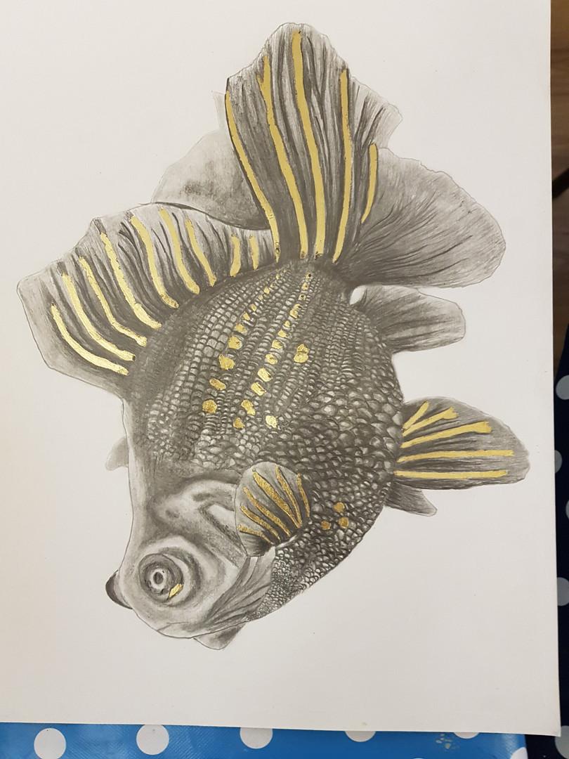 Fran's goldfish