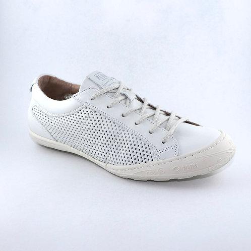 PLDM White 116130
