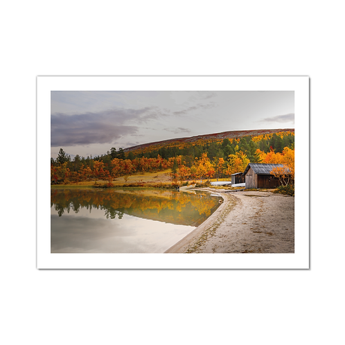 Misty Mountain Collection - Cottage