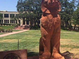 From Redwood Tree to Carved Wildcat