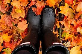 Comfort Insoles - Wellington Boots.jpg