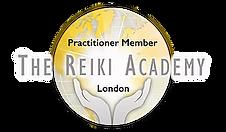 Practitioner Logo.webp