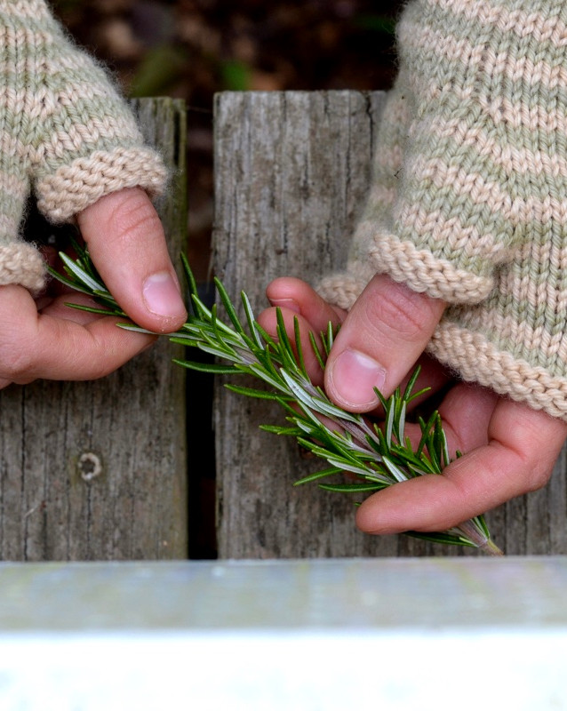 Rosemary Mitts