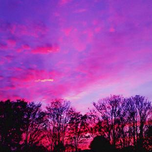 Sofia-Pink Sunset