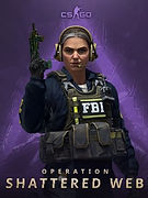 Counter-Strike_ Global Offensive-285x380
