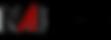 NAI+Logo.png