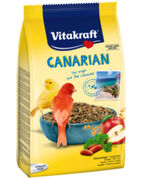 Canarian.png