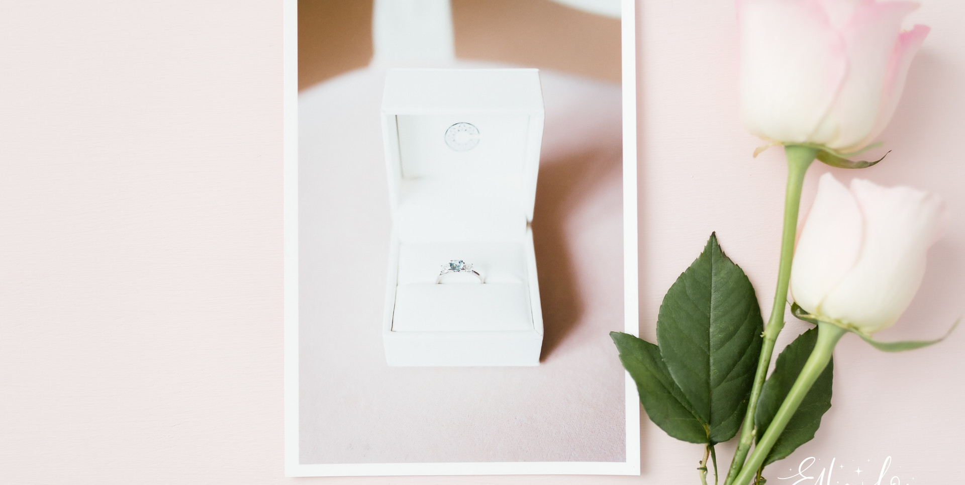 Bristol & Somerset Wedding Photographer - Ellie Lou Photography