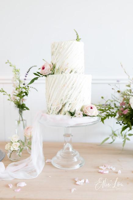 Somerset Wedding Photographer - Ellie Lou Photography