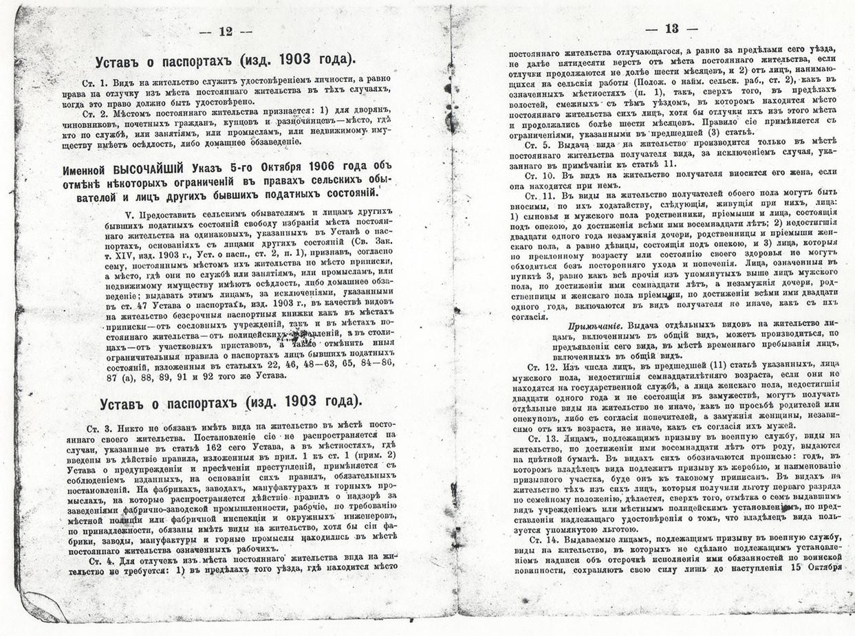 Паспорт Кочериной_06.jpg
