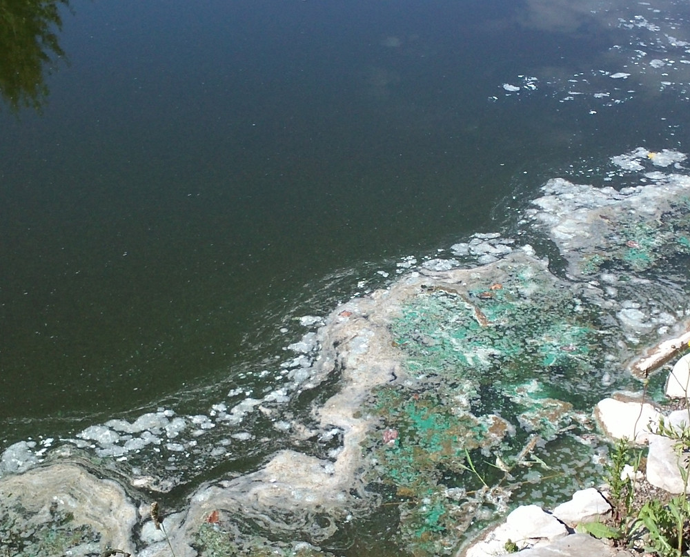 Muck or sludge accumulation can lead to more serious problems in your pond.