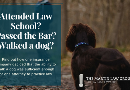 Attended Law School? Passed the Bar? Walked a Dog?