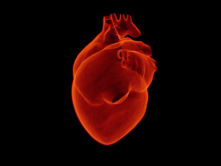 Facts About Heart Attack Disability