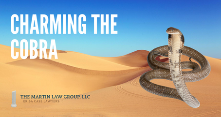 Charming the COBRA: A Summary of the Rules Governing Your Health Coverage