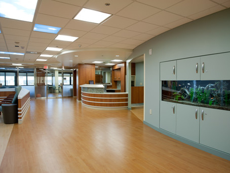 Letting the Light In: Designers Bring New Rays of Hope to Behavioral Health Facilities