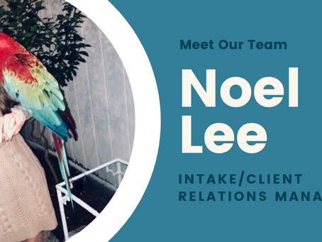 Meet Our Team: Intake/Client Relations Manager Noel Lee