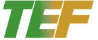 Copy of TEF_Logo (1).png