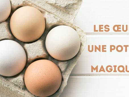 LES OEUFS, UNE POTION MAGIQUE ? 🥚