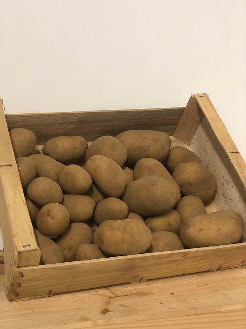 Marabel (Frites & Purée) - 25kg