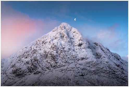 Moonlit Majesty