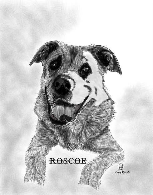 Roscoe2wb.png