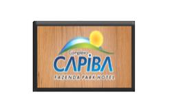 CAPIBA 01.png