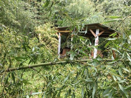 【ご報告】台風15号の被害について