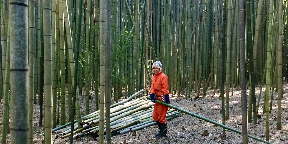 【終了】公開竹林整備Day 2020.1.18