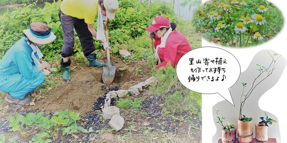 【終了】里山庭づくりワークショップ
